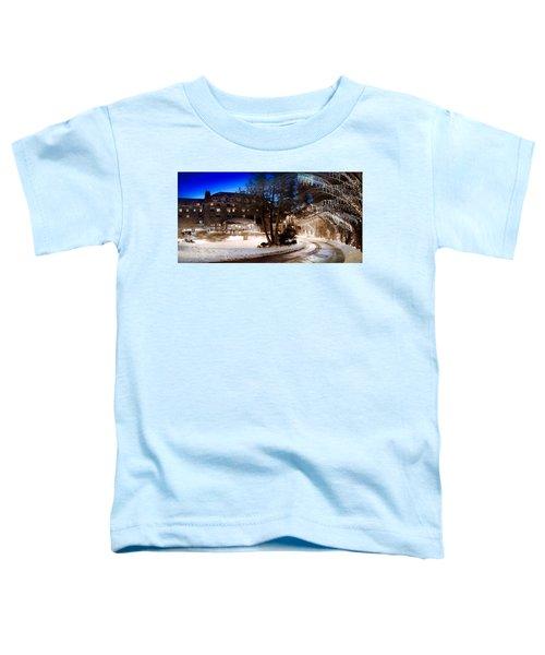 Celebrate The Winter Night Toddler T-Shirt