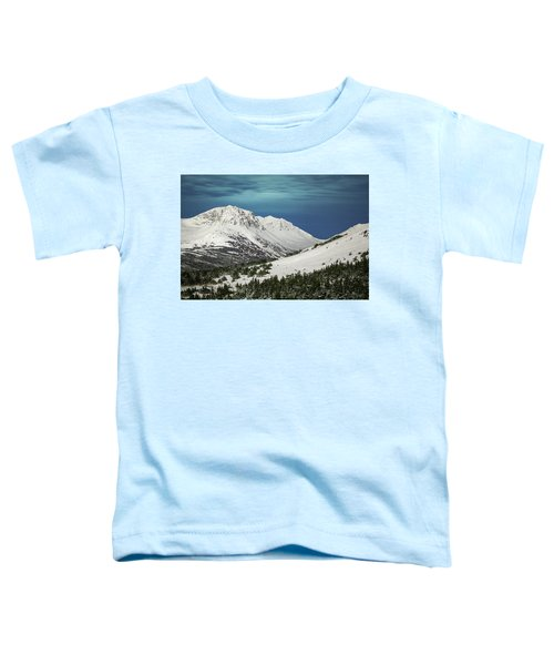 Chugach Night Toddler T-Shirt