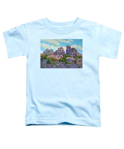 City Of Rocks Toddler T-Shirt