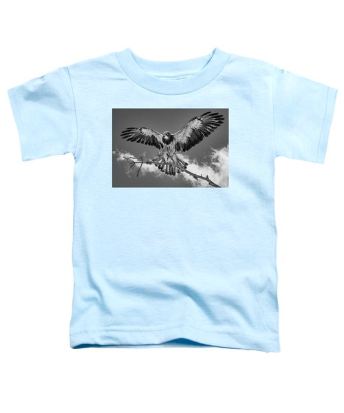 Cleared For Landing 2 Toddler T-Shirt