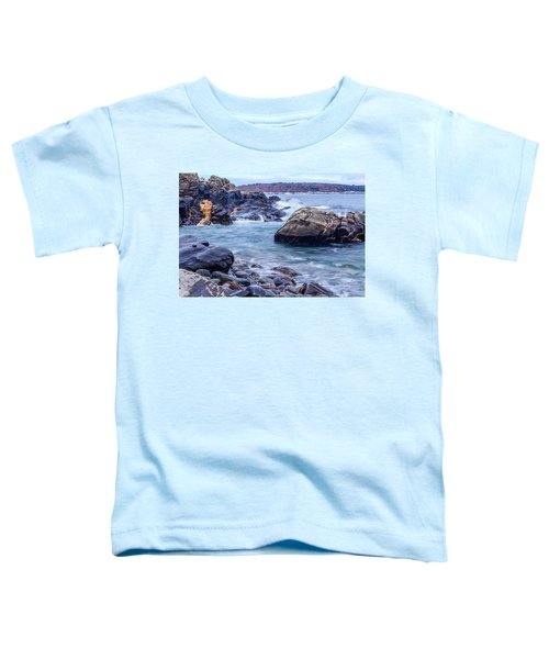 Coast Of Maine In Autumn Toddler T-Shirt
