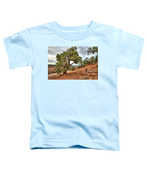 Colorado National Monument Toddler T-Shirt