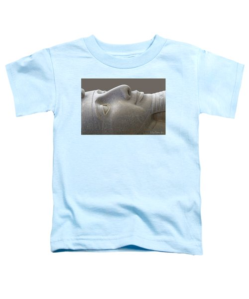 Colossal Smile Toddler T-Shirt