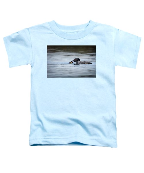 Common Loon Toddler T-Shirt by Bill Wakeley