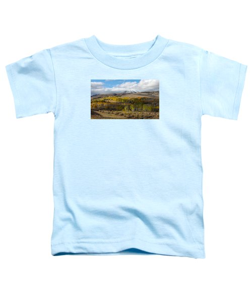 Conway Summit 4 Toddler T-Shirt