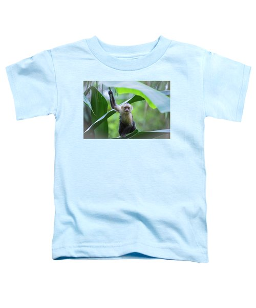 Costa Rica Monkeys 1 Toddler T-Shirt