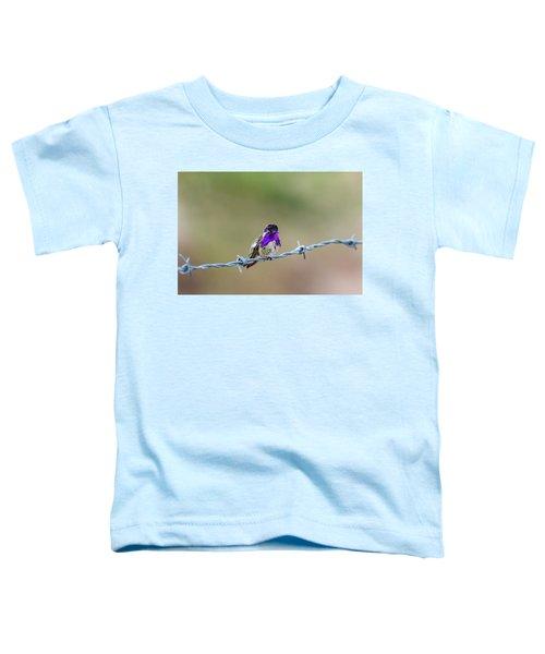 Costa's Hummingbird Toddler T-Shirt