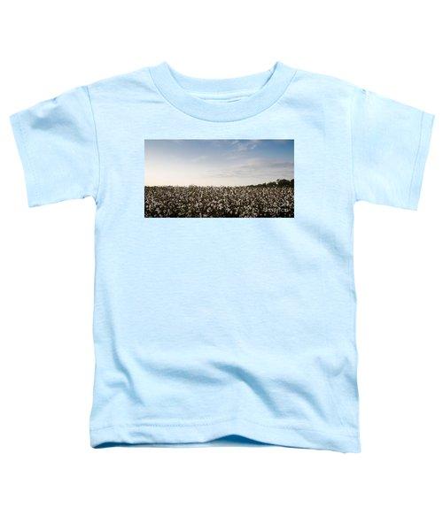 Cotton Field 2 Toddler T-Shirt