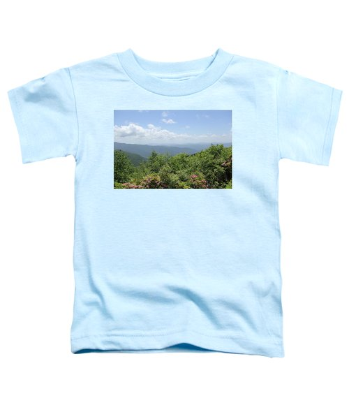 Craggy View Toddler T-Shirt