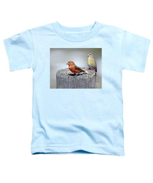 Crossbills Toddler T-Shirt