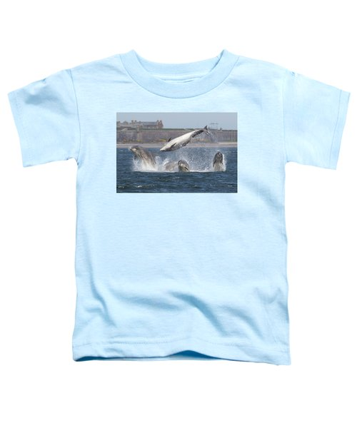Dance Of The Dolphins Toddler T-Shirt
