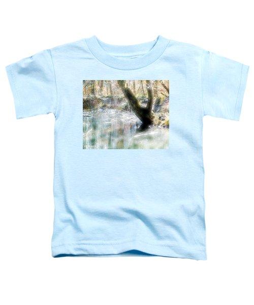 Degenried Switzerland Toddler T-Shirt