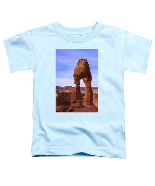 Delicate Landmark Toddler T-Shirt