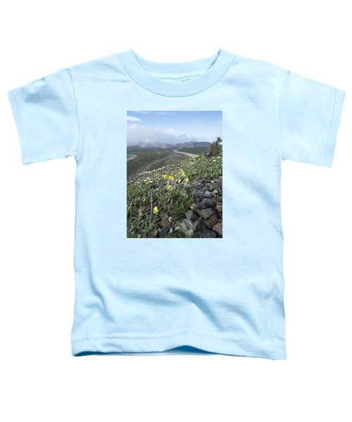 Denali Wildflowers Toddler T-Shirt