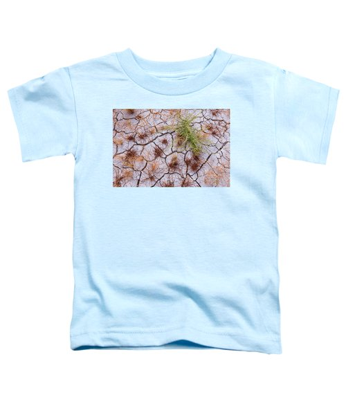 Details Of The Playa Toddler T-Shirt