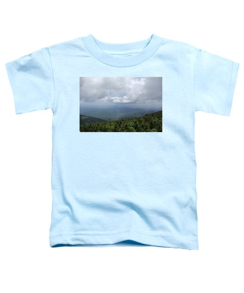 Distant Storm Toddler T-Shirt