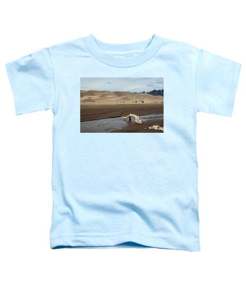 Drift Wood And Dunes Toddler T-Shirt
