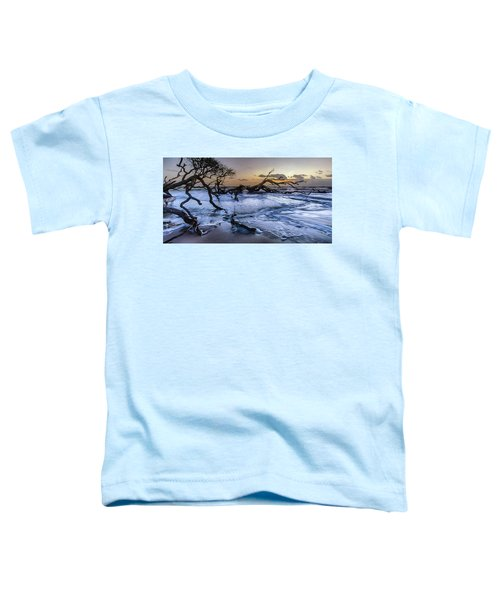 Driftwood Beach 3 Toddler T-Shirt