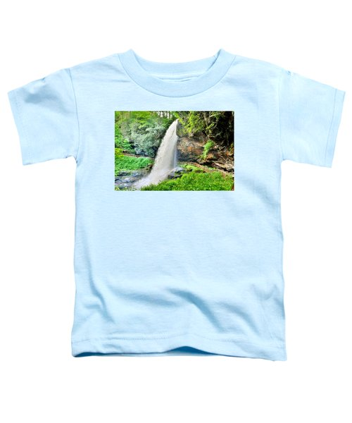 Dry Falls Highlands North Carolina 2 Toddler T-Shirt