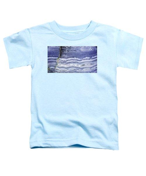 Earth Portrait 001-68 Toddler T-Shirt