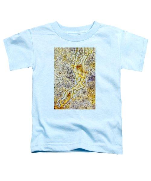 Earth Portrait 276 Toddler T-Shirt