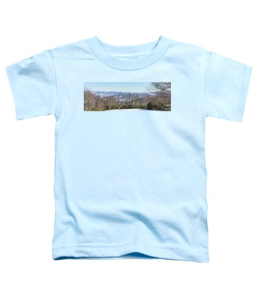 Easterly Winter View Toddler T-Shirt