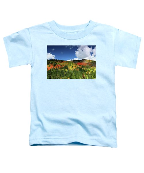 Faafallscene115 Toddler T-Shirt