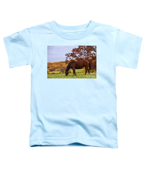 Fall And A Horse Toddler T-Shirt