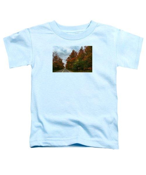 Fall Colors Dramatic Sky Toddler T-Shirt