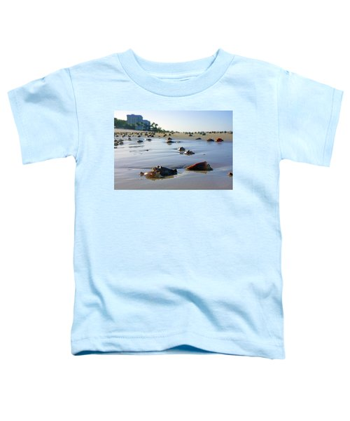 Fighting Conchs On The Beach In Naples, Fl Toddler T-Shirt