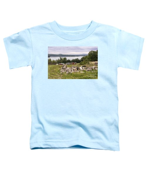 Firewood And Ice Houses Toddler T-Shirt