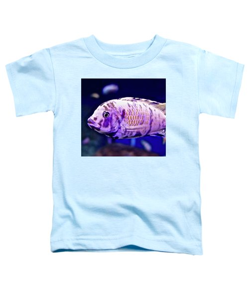 Calico Goldfish Toddler T-Shirt