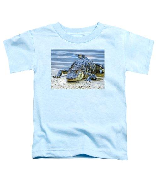 Florida Alligator Closeup Toddler T-Shirt