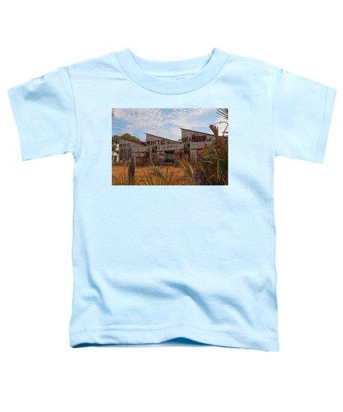 Florida Oranges Toddler T-Shirt