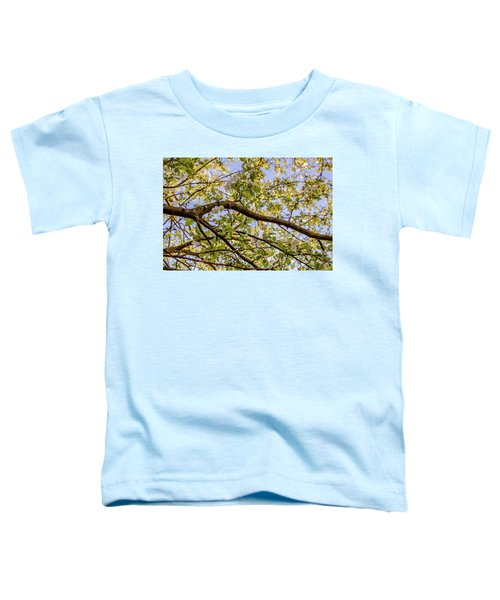 Flowering Crab Apple Toddler T-Shirt