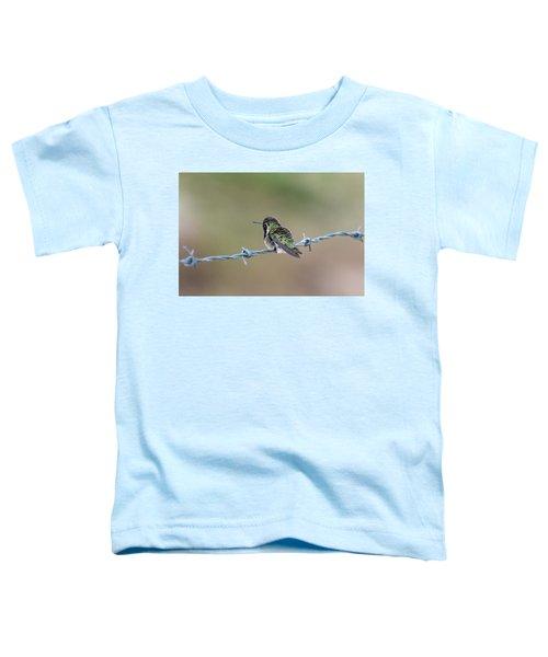 Fluffy Hummingbird Toddler T-Shirt