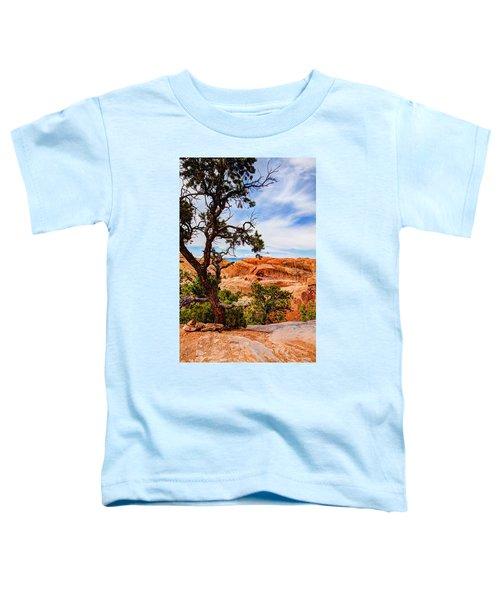 Framed Arch Toddler T-Shirt