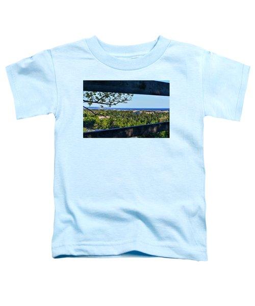 Framed View Toddler T-Shirt