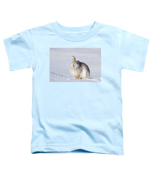 Funny Face - Mountain Hare - Scottish Highlands  #13 Toddler T-Shirt