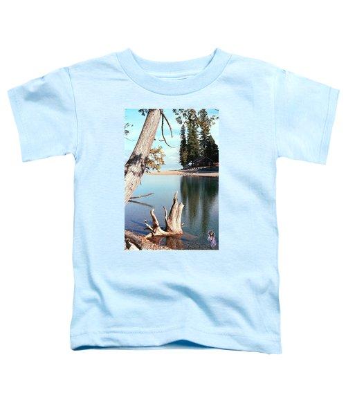 Glacier National Park 4 Toddler T-Shirt