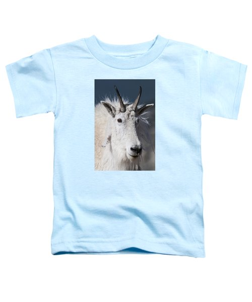 Goat Portrait Toddler T-Shirt by Gary Lengyel
