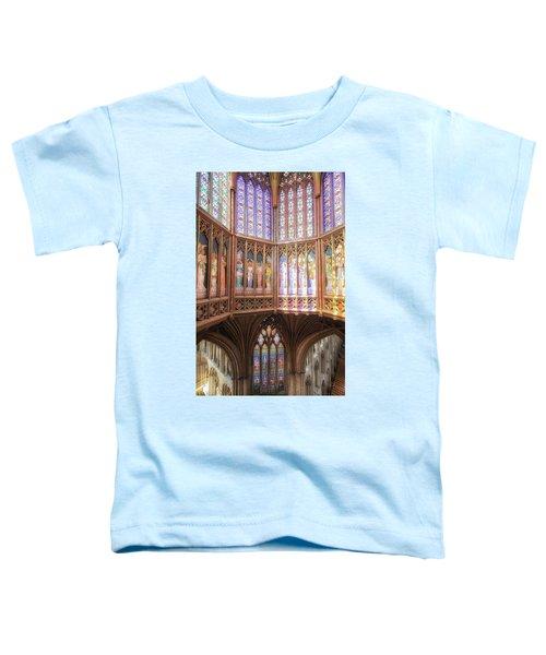 Gods Colors Toddler T-Shirt