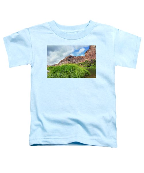 Grass Along John Day River In Central Oregon Toddler T-Shirt