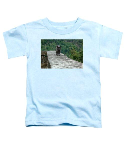 Gray Cat Prowling Toddler T-Shirt