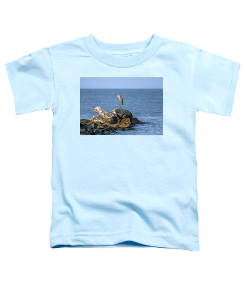Great Blue Heron On Chesapeake Bay Toddler T-Shirt