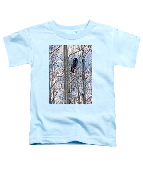 Great Grey Owl Toddler T-Shirt