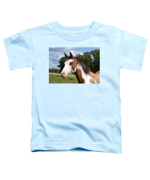 Gypsy Paint Toddler T-Shirt