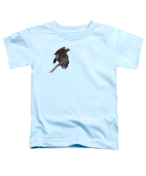Harris Hawk - Transparent 2 Toddler T-Shirt by Nikolyn McDonald