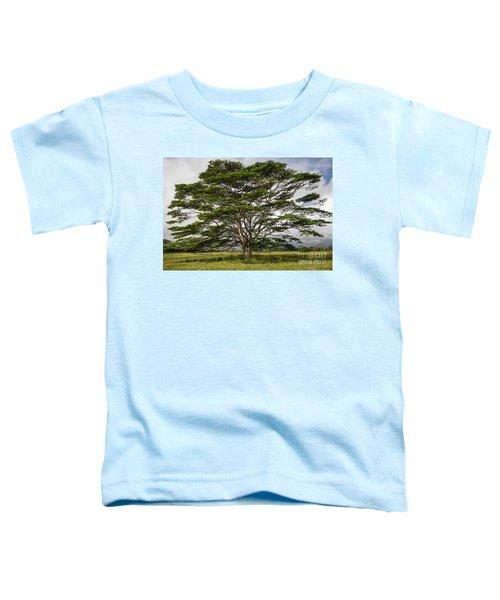 Hawaiian Moluccan Albizia Tree Toddler T-Shirt