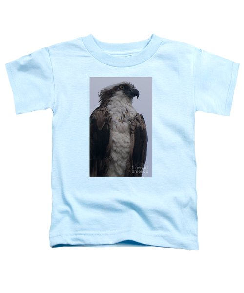 Hawk Looking Into The Distance Toddler T-Shirt
